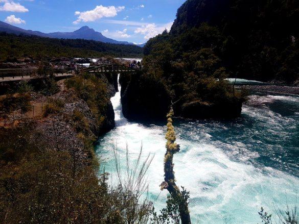 Kelionė į Čilę. Raftingas ledine ugnikalnio upe, pingvinai ir įspūdingas 3600 m. senumo miškas
