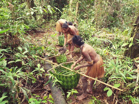 Ekspedicija į Papuą salą. Savaitę nakvojau pas kanibalus ir dalyvavau jų unikaliame gyvenime
